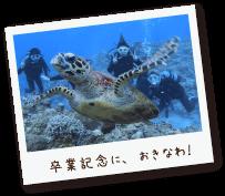 卒業記念に、沖縄でダイビングしました!