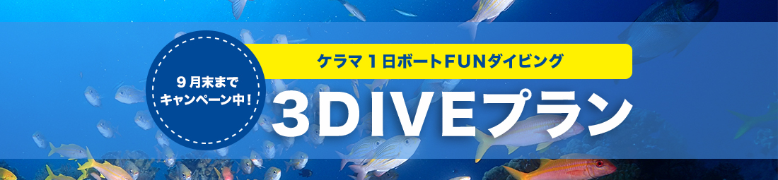 ケラマ1日ボートファンダイビング 3DIVEプラン