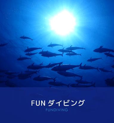 FUN ダイビング FUNDIVING
