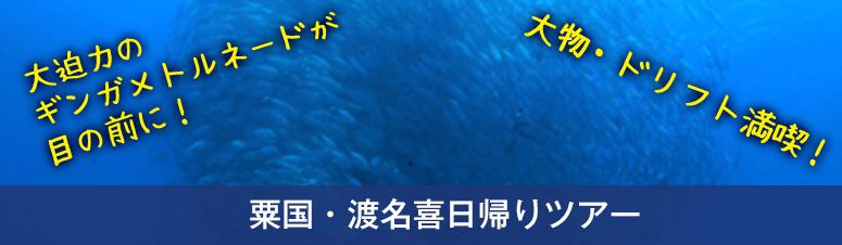 粟国・渡名喜日帰りツアー