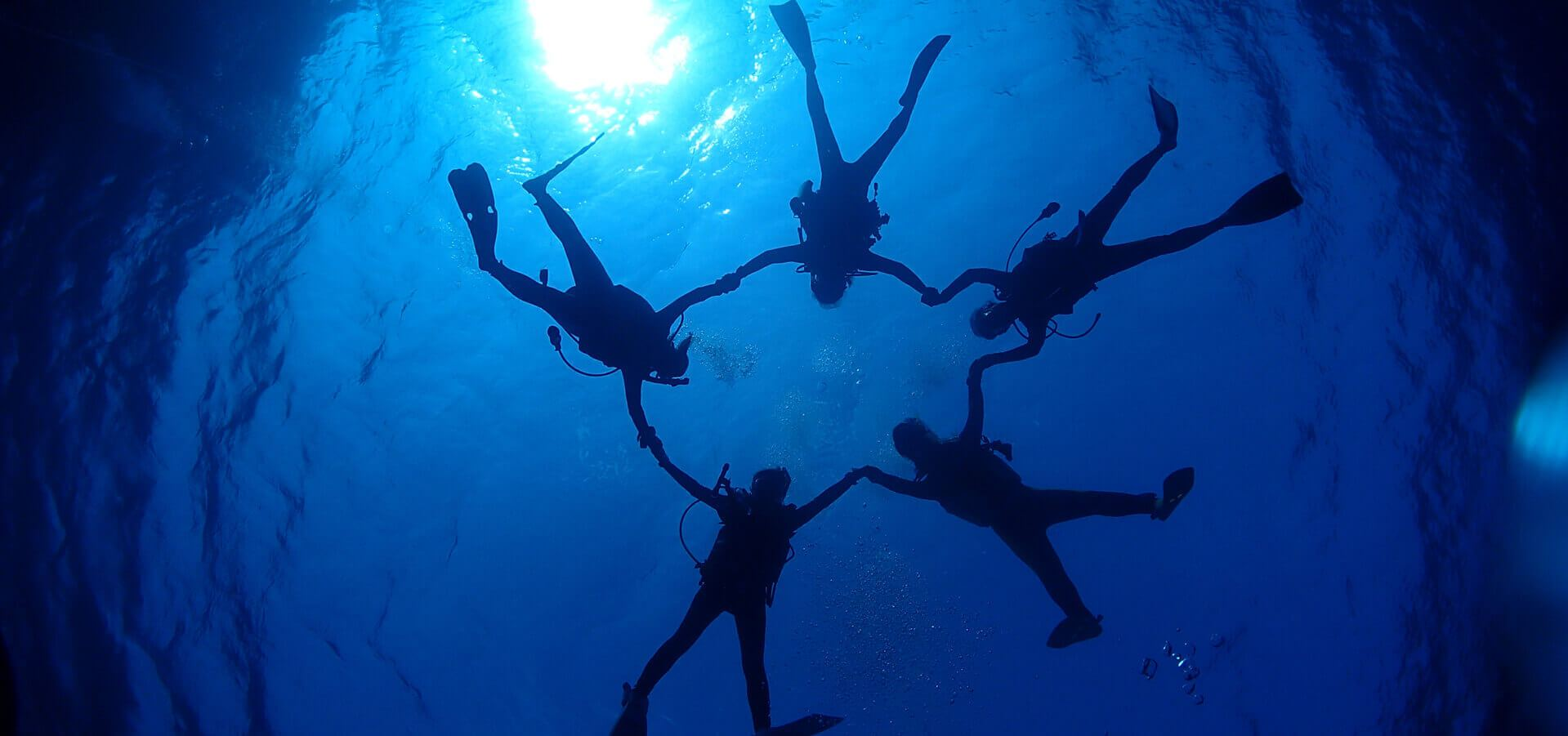 グループや団体様のダイビングも歓迎です。